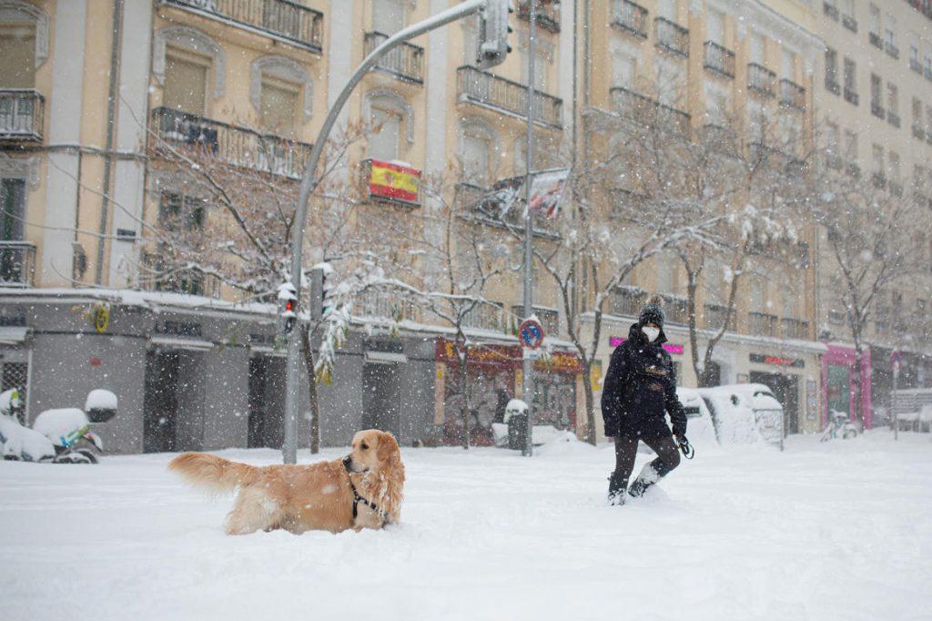 Heavy snowfall has paralyzed Madrid