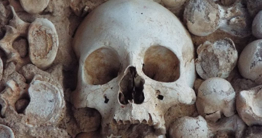 Index - Tech-Science - Graves guarding human skulls were discovered buried in containers in southwest China