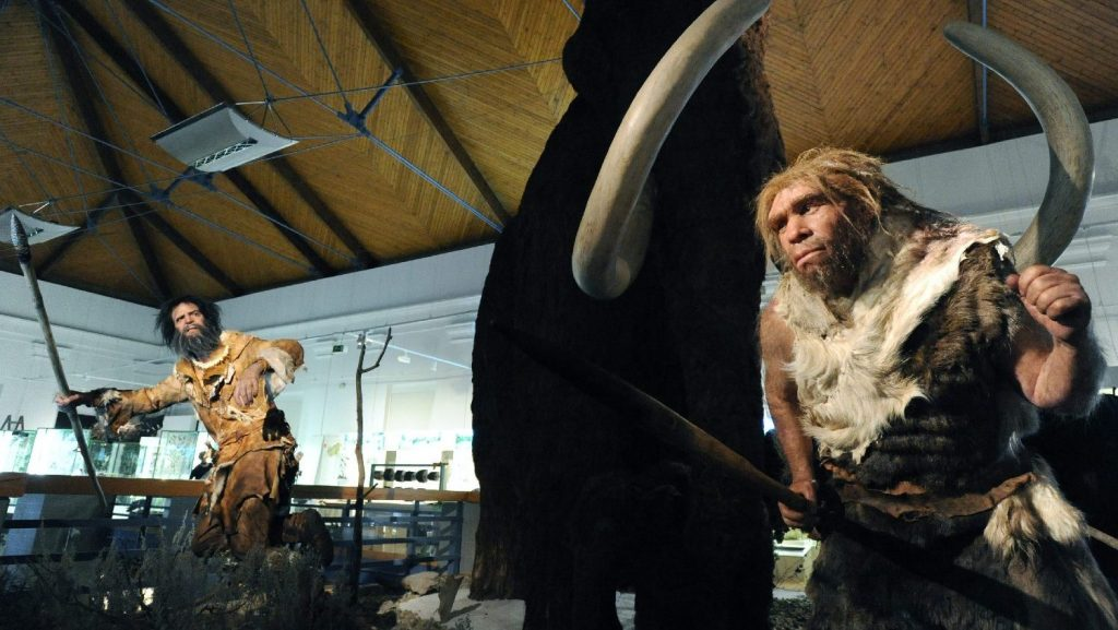 Earth's magnetic pole shift may have played a role in the extinction of Neanderthals