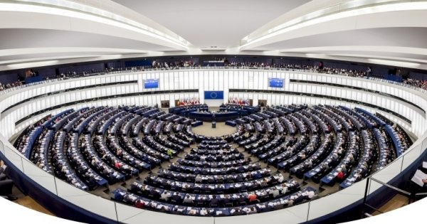 "Lack of parties is the ""political no-man's land"" in the European Parliament"