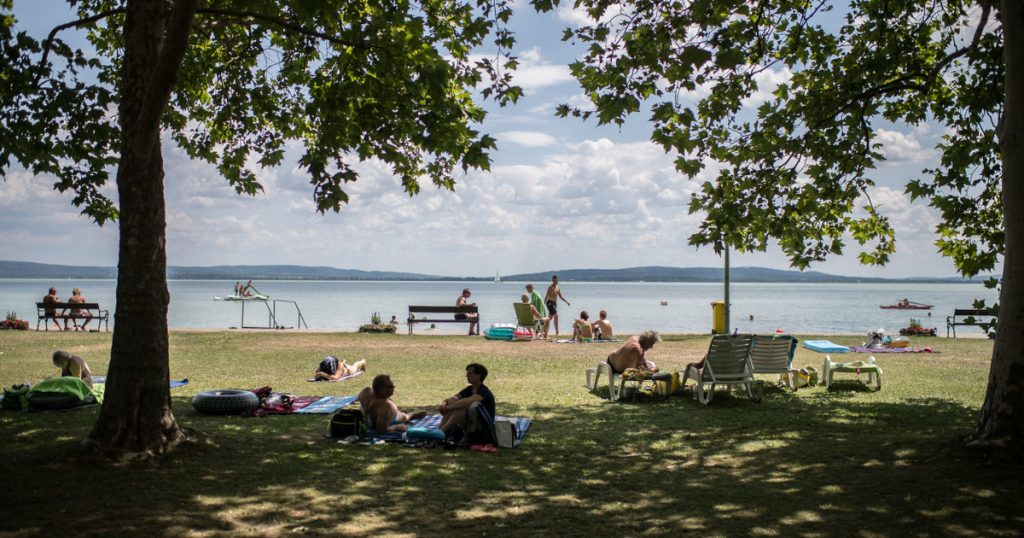 Index – Economy – Lake Balaton will be toxic in August