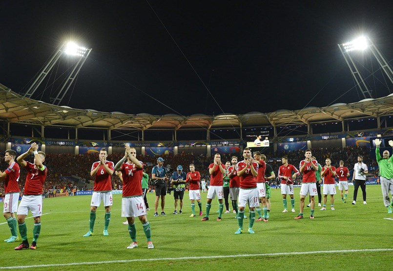 What happened to the Hungarian World Cup 2016 champions?