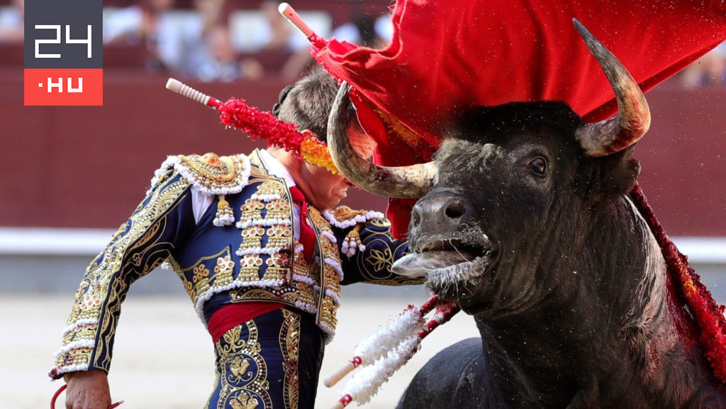 After more than 500 days, bullfighting took place again in Madrid