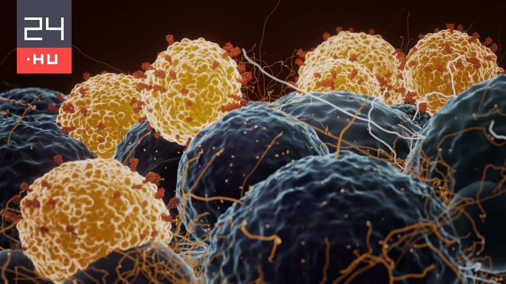 Delta variant of coronavirus doubles chances of hospitalization