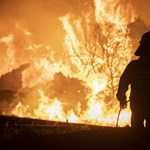 Forest fires were burning in 56 places in Greece at the same time