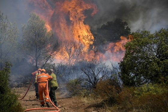 Zhvg: Bushfires raging near the French Riviera, many given only minutes to escape