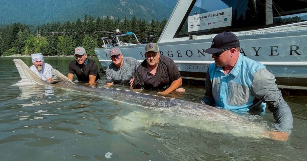 Index - Sport - A world record fish caught by the legendary goalkeeper